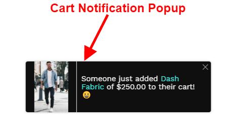 Cart Notification Popup
