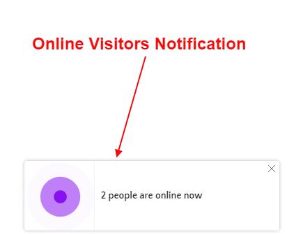 Online_Visitor